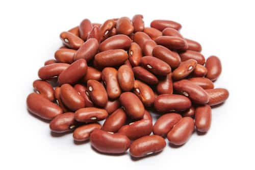 Michigan Light Red Kidney Beans
