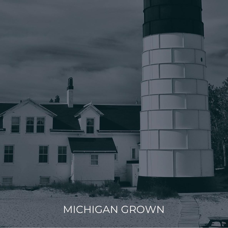 Illiad Epic Grow - Michigan Grown Cannabis