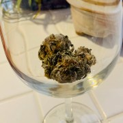 Marijuana Bud in Wine Glass