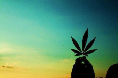 Cannabis Leaf by laaralyne