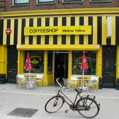 Amsterdam Cannabis Cafe