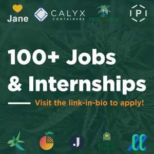 MSU Cannabis 2021 Internships