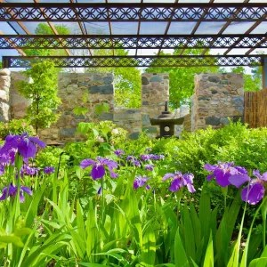 Traverse City Botanic Garden