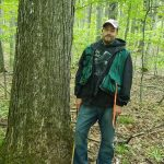 Kamen Forest Management Photos Tree Photos