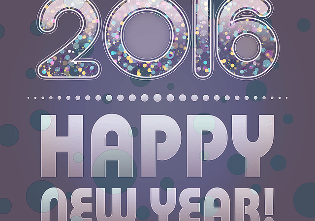 Happy New Year! Will Resume January 4th, 2016!