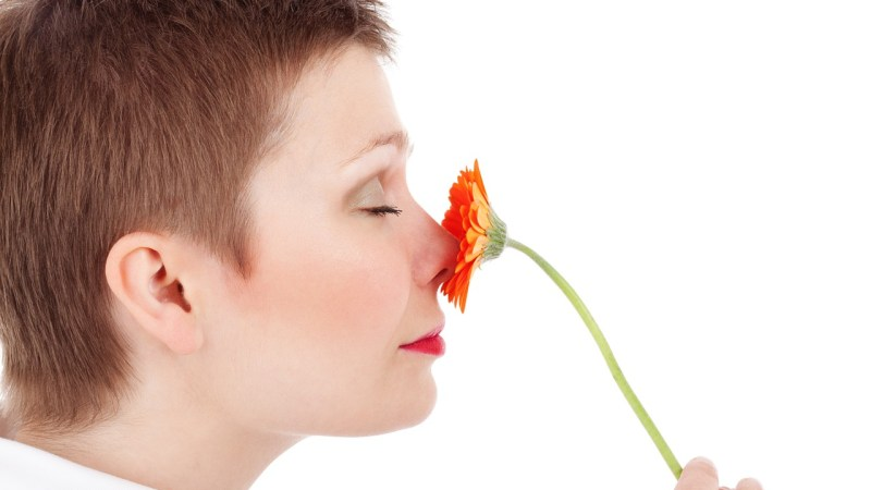 Psychology of Smell Expert with Best-Selling Author Rachel Herz