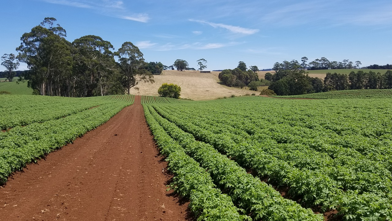 """New """"Science Matters"""" Initiative Aims to Boost Education and Interest in Agricultural Science to Meet Demand {Interview}"""
