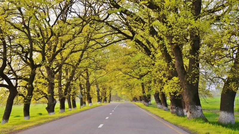 Spring Break Idea – Data Scientist Maps Ultimate Detroit Family Road Trip {Guest Post}