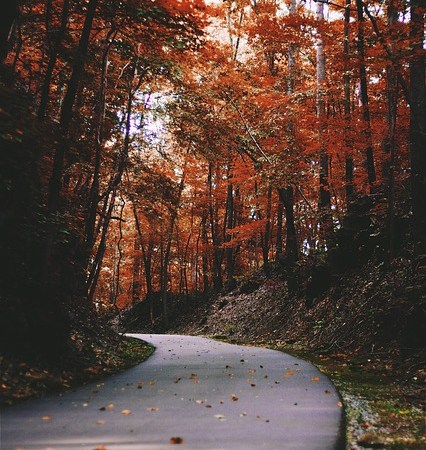 Fall Road Trips in Michigan
