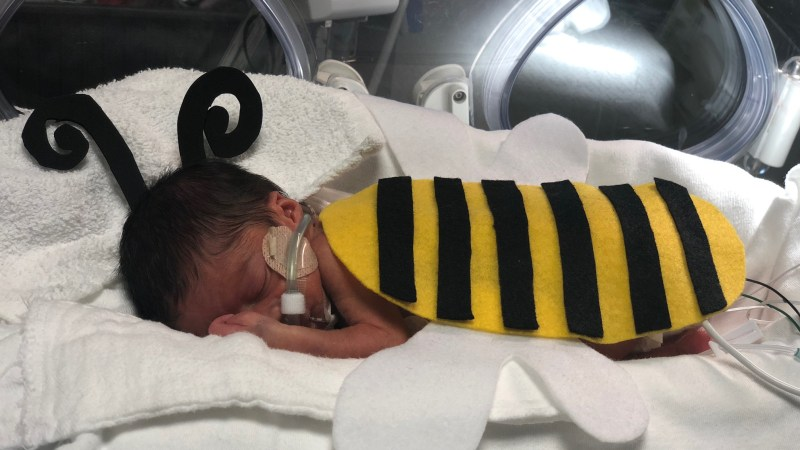 Neonatal Babies at Hutzel Women's Hospital Dressed Up for Halloween