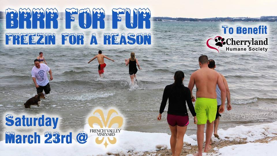 BRRR for FUR Polar Plunge March 23, 2019-Suttons Bay