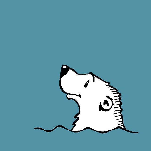 Hello World! Board Book Series is Back with Arctic Animals and Pets – Book Showcase