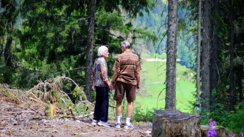 How You Can Give Your Parents the Proper Care They Need