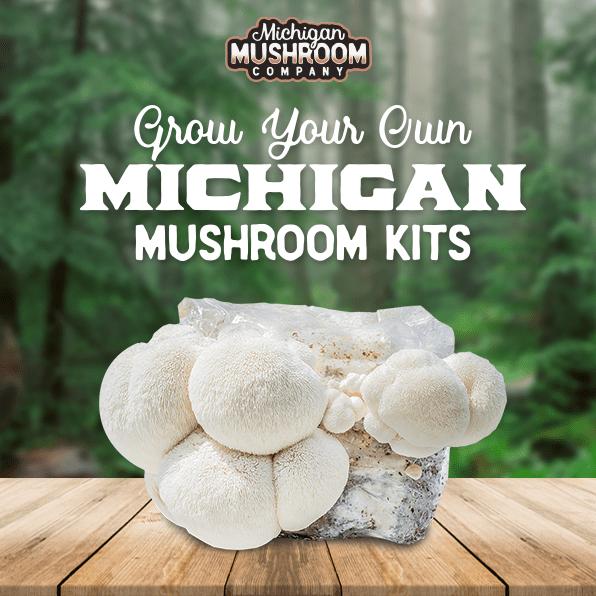 Michigan Mushroom Company | Grow Your Own Mushroom Kits!