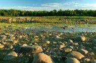 MNA purchased an addition to Kernan Memorial Nature Sanctuary along Lake Huron's Whiskey Harbor. [Photo: Jason Steel]