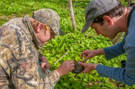 MNA hosted three BioBlitz events in the Upper Peninsula and Southwest Michigan to complete comprehensive species lists at each sanctuary. [Photo: Patricia Pennell]