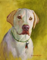 oconnelldog