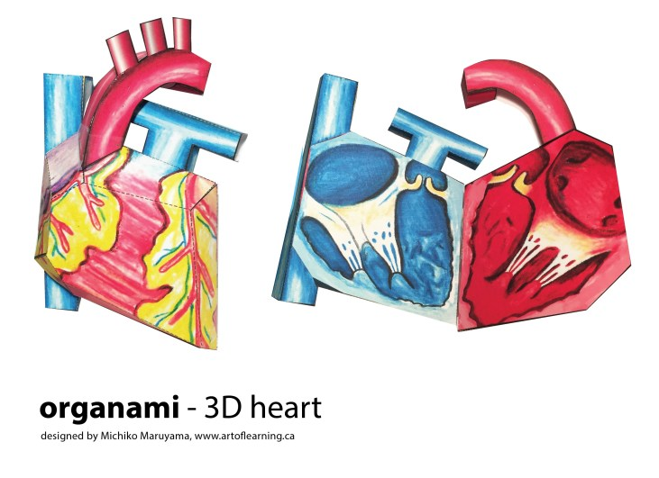 3D heart front cover-01