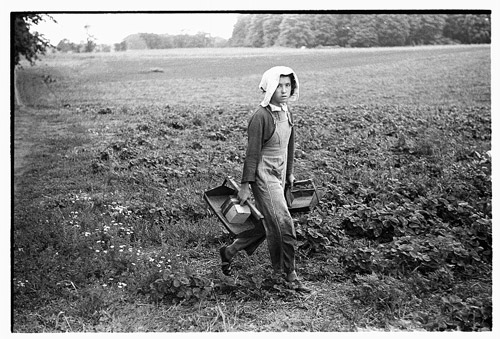 Migrant girl, strawberry picker, Berrien County, Mich.