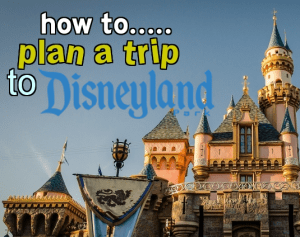 whatsdisneylandhowtoplan