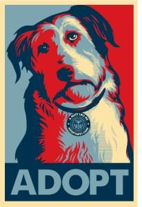 imagen:animalcaresociety.org