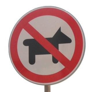 prohibición mascotas