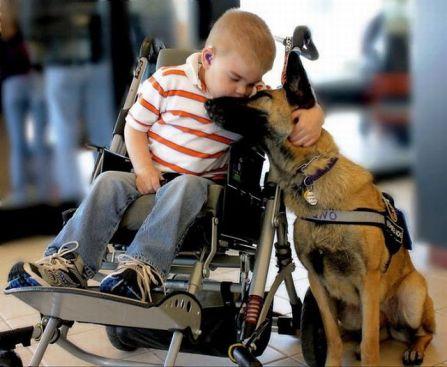 Niño besando a perro
