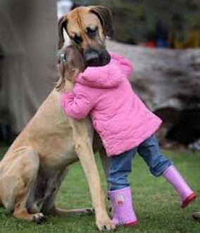 Abrazo entre perro y niña