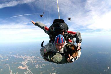 Perro salta paracaídas