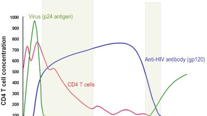 Laboratory Diagnosis Of Hiv Infection Microbeonline