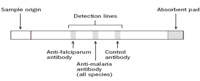 Malaria lab diagnosis