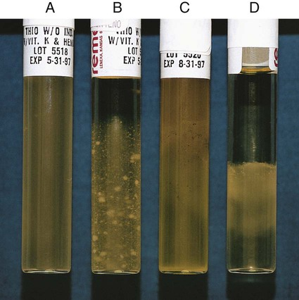 Growth Characteristics of Various Bacteria in tholgycollate broth