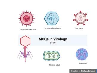 MCQs virology 10-20