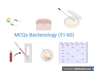 MCQs Bacteriology 51-60