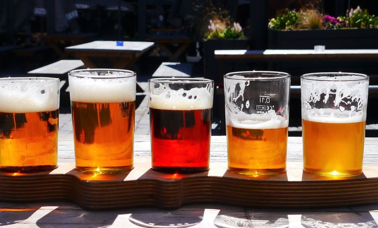 Photo of Your Guide To Understanding The 7 Primary Categories of Beer
