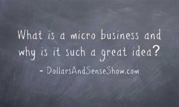 What-is-a-micro-business