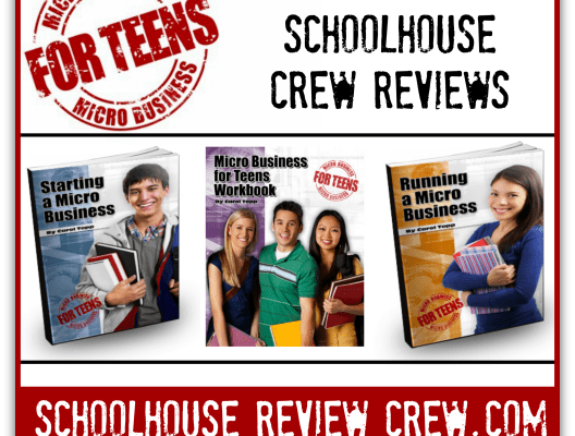 TOS Review of Micro Business for Teens