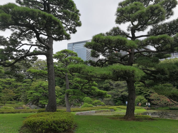 Dag to i Tokyo: Akihabara!