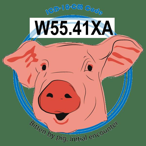 ICD-10 Code W55.41XA image