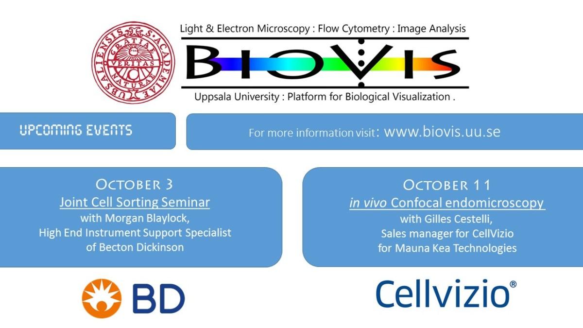Confocal endoscopy talk in Uppsala