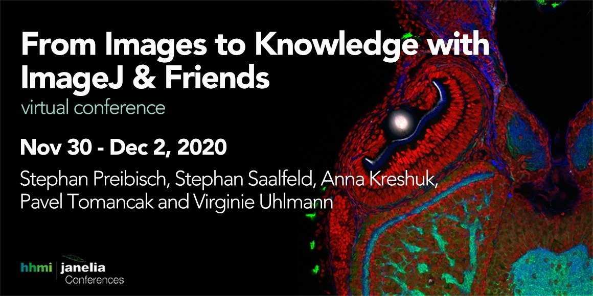 From Images to Knowledge virtual workshop