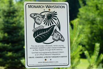Monarch waystation sign from MonarchWatch.org
