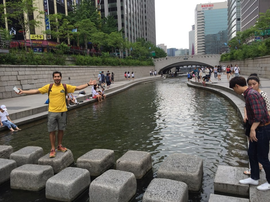 Get off my stones! - Cheonggyecheon Stream