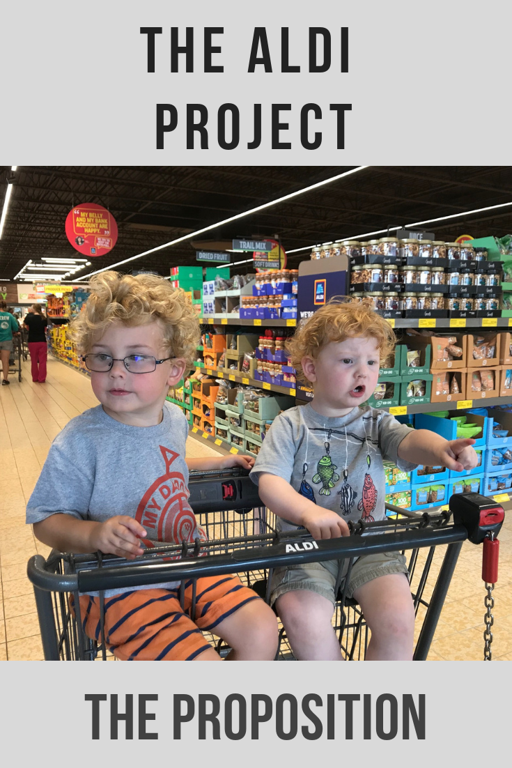 the Aldi project: the proposal