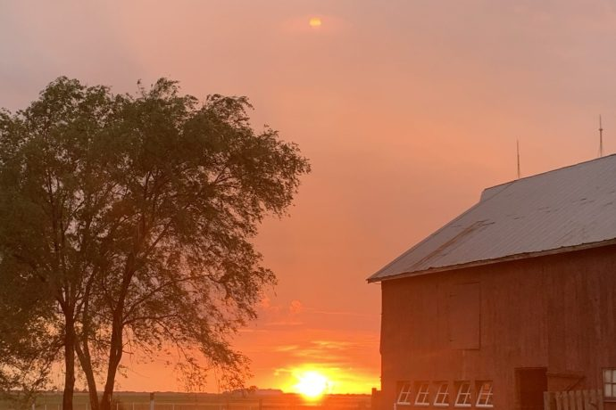 This Week at the Farm 20: The Peace of Farm Life