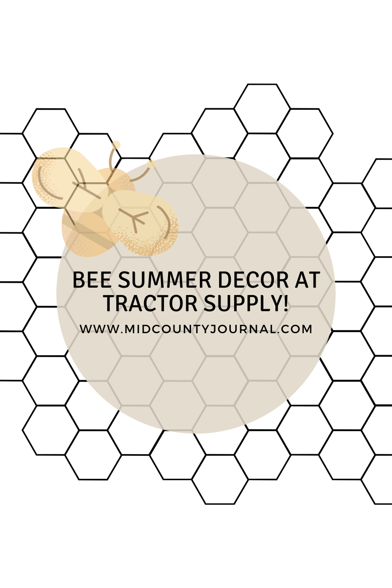 Bee Summer Decor at Tractor Supply   Midcounty Journal