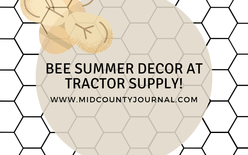 Bee Summer Decor at Tractor Supply!
