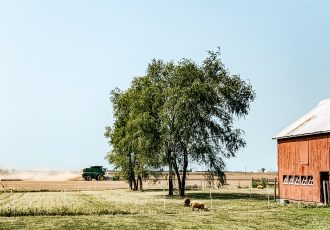 Weekly Farm Update: Happy First Day of Fall