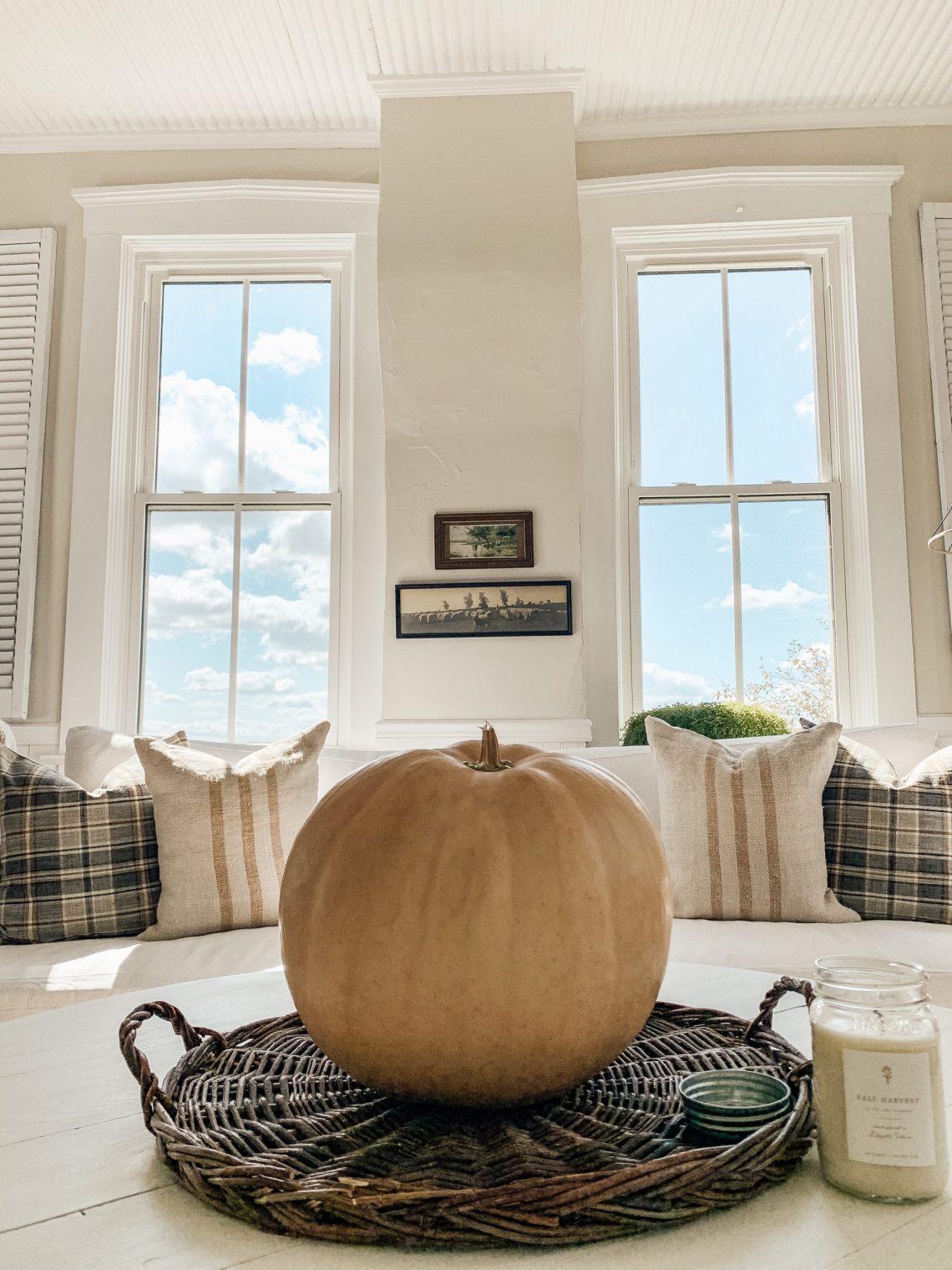Favorite Fall Throw Pillows