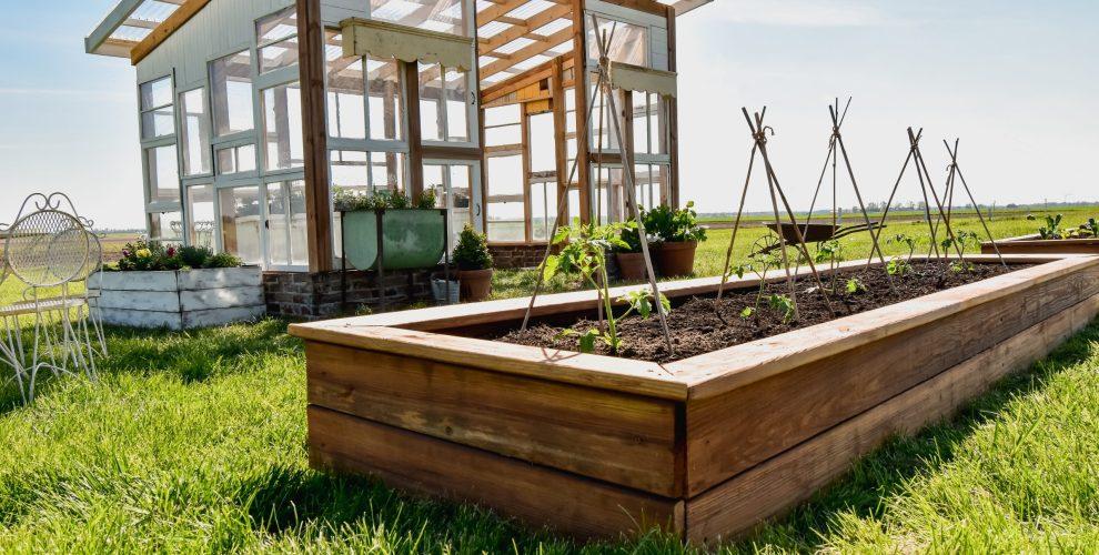 How to Build the Best DIY Raised Garden Beds
